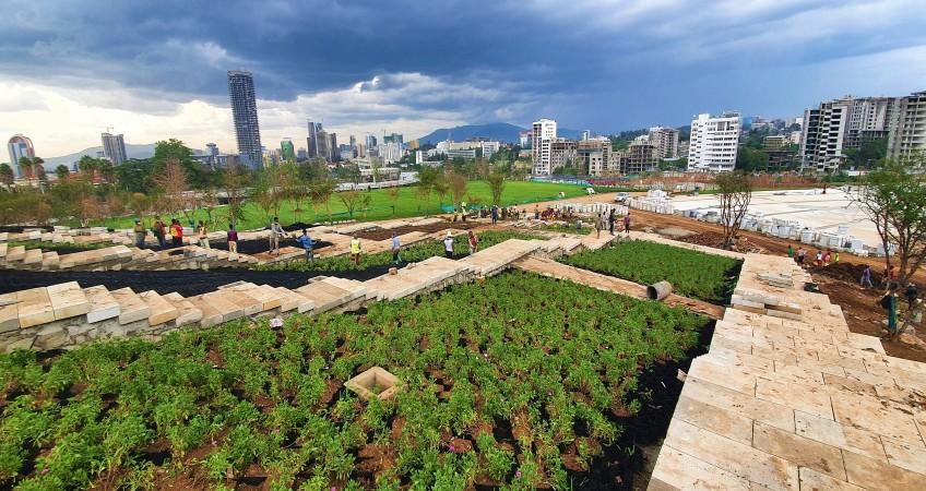 Addis Ababa riverside green development project